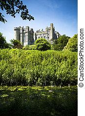 ensoleillé, luxuriant, environs, arundel, vert, château, jour