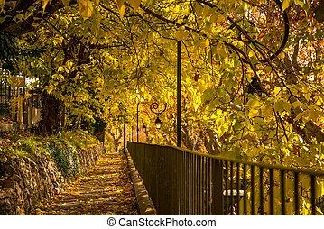 ensoleillé, parc, jour, walkway