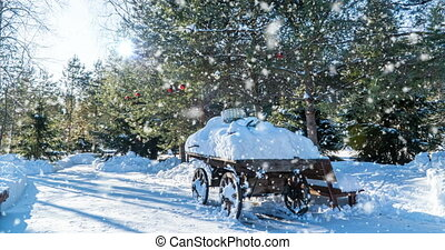 ensoleillé, paysage, chute neige, forêt, cinemagraph, boucle, maison, beau, lent, hiver, vidéo
