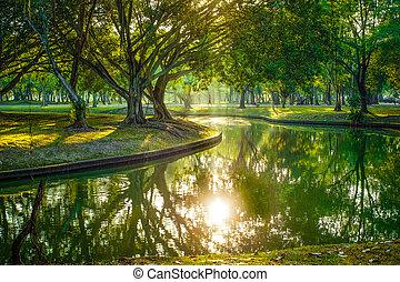 ensoleillé, public, lac, jour, parc
