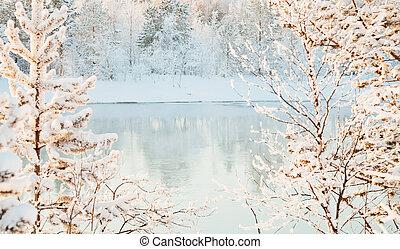 ensoleillé, rivière, -, paysage hiver