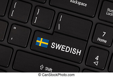 Enter button with flag Sweden - Concept of language
