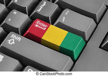 Enter button with Guinea Flag
