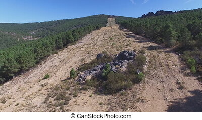 Entering firebreak, aerial view with pine tree forest and rock