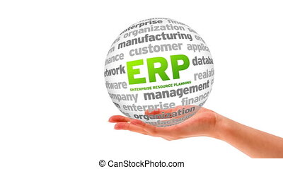 Enterprise Resource Planning - A person holding a 3d...
