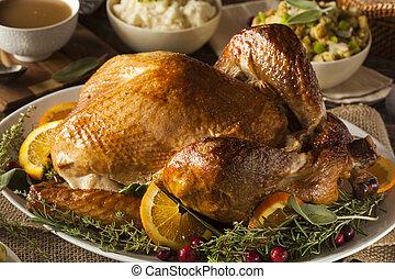 entier, fait maison, thanksgiving turquie