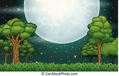 entiers, étoilé, temps, ciel, lune, forêt, nuit, paysage