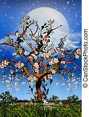 entiers, blosom, arbres cerise, lune, nuit