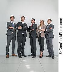 entiers, business, photo, croissance, équipe, professionnel