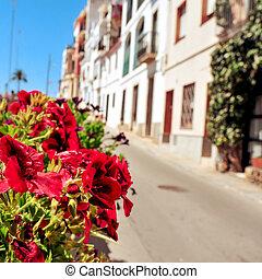 entiers, méditerranéen, lumière soleil,  village