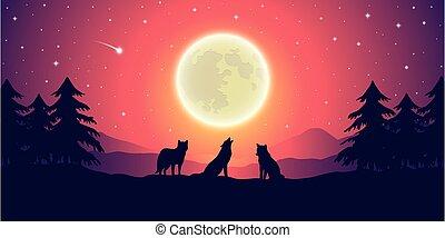 entiers, montagne, deux, pourpre, lune, loups, étoilé, paysage, ciel