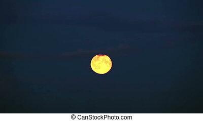 entiers, nuages, ciel, lune, par, mouvements