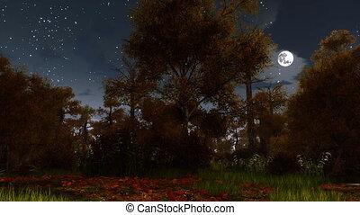 entiers, spooky, lune, forêt automne, nuit, 4k