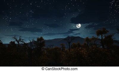entiers, spooky, sur, lune, 4k, nuit, forêt