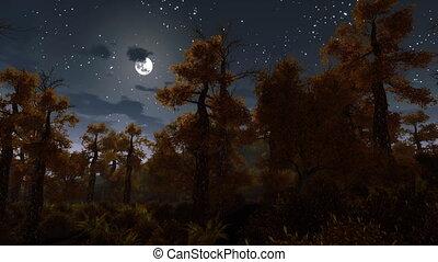 entiers, spooky, sur, lune, forêt, nuit, 4k