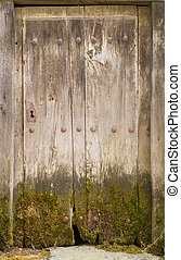Entire old wooden door with moss and lock