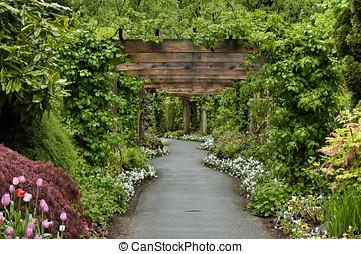 entlang, kleingarten, spaziergang