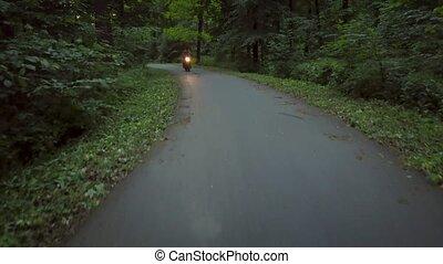 entouré, arbres, motard, motocyclette, équitation, route