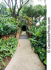 entrée, jardin