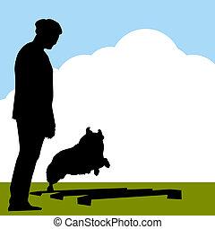 entraîneur, colley, frontière, chien
