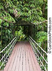 Entrance bridge in Gunung mulu national park Borneo Malaysia