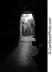 entrance hall of an abandoned house