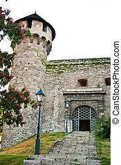 Buda Castle - Entrance in Buda Castle; a historical castle...