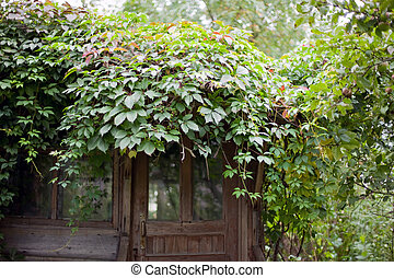 entrance of old abandoned garden house