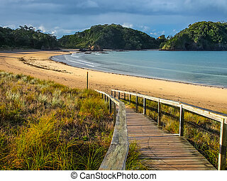 Entrance to a Deserted Beach in Northland, New Zealand - ...
