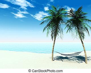 entre, palmtrees, hamaca