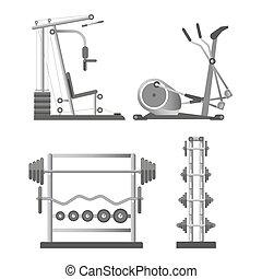 entrenamiento, aparatos, y, pesas, en, estantes,...