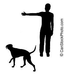 entrenamiento del perro, (obedience):, command:, ir, right!