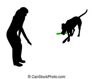 entrenamiento del perro, (obedience):, command:, traer, palo