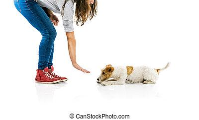 entrenamiento, mujer, perro, aislado