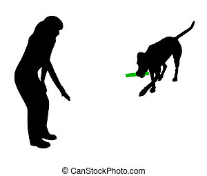 entrenamiento, (obedience):, command:, perro, traer, palo