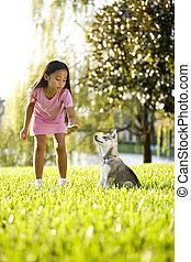 entrenamiento, sentarse, joven, niña asiática, perrito