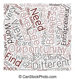 entrepreneur business opportunity 1 text background wordcloud concept
