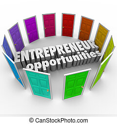 Entrepreneur Opportunities words in the middle of many colored doors to illustrate the wide array of business paths, directions and choices surrounding you