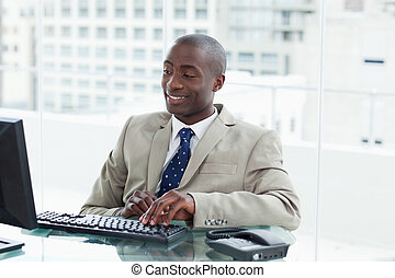 Entrepreneur using a computer