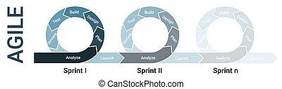 entrepreneurs, logiciel, sprints, lifecycle, processus, diagramme, développement, agile, infographic