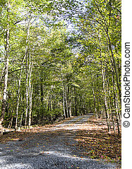 Entry Road into Private Property in Fall Season
