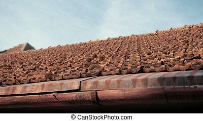 envahi, rouges, mousse, toit, tuiles, château, ancien, vieux