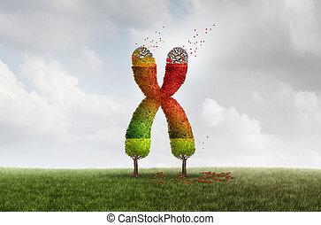 envejecimiento, concepto, salud, telomere