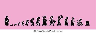 envelhecimento, vida, process., femininas, ciclo
