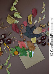 envelope with autumn greetings