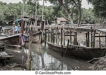 environment around mangrove forest
