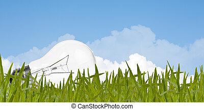 Environment concept, lightbulb in the grass