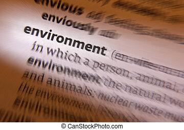 Environment - Dictionary Definition