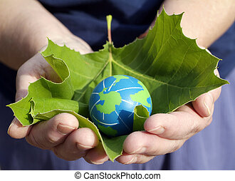 Environmentalism Earth Day Concept: Hands of an environmentally minded Person holding a leaf for protection of small eco friendly blue and green globe of the earth.
