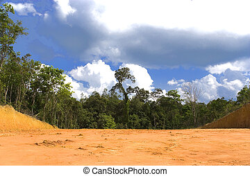 Environmental Destruction - Tropical rainforest destruction...